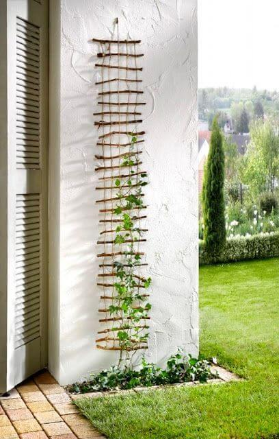DIY Trellis | Up-cycled Trellis Ideas For Garden