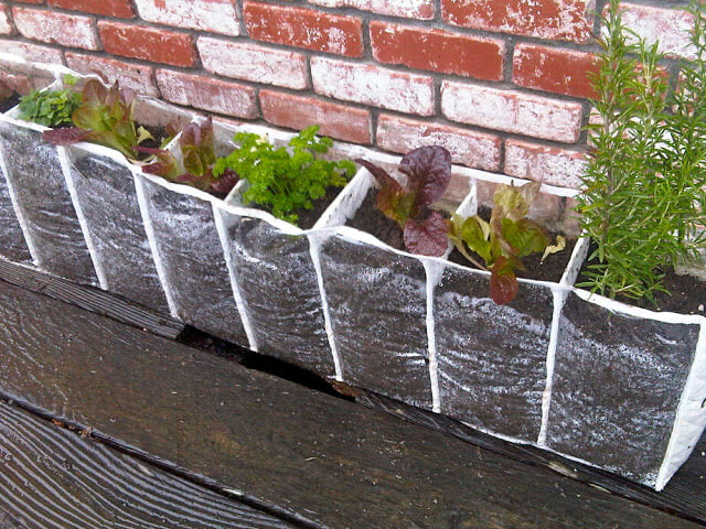 Repurposing A Shoe Hanger Into A Children's Herb Garden | Low-Budget DIY Garden Pots and Containers