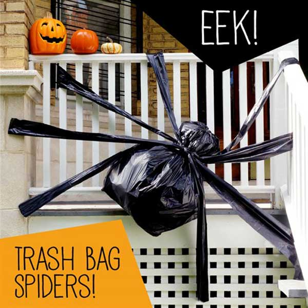 Trash bag spiders