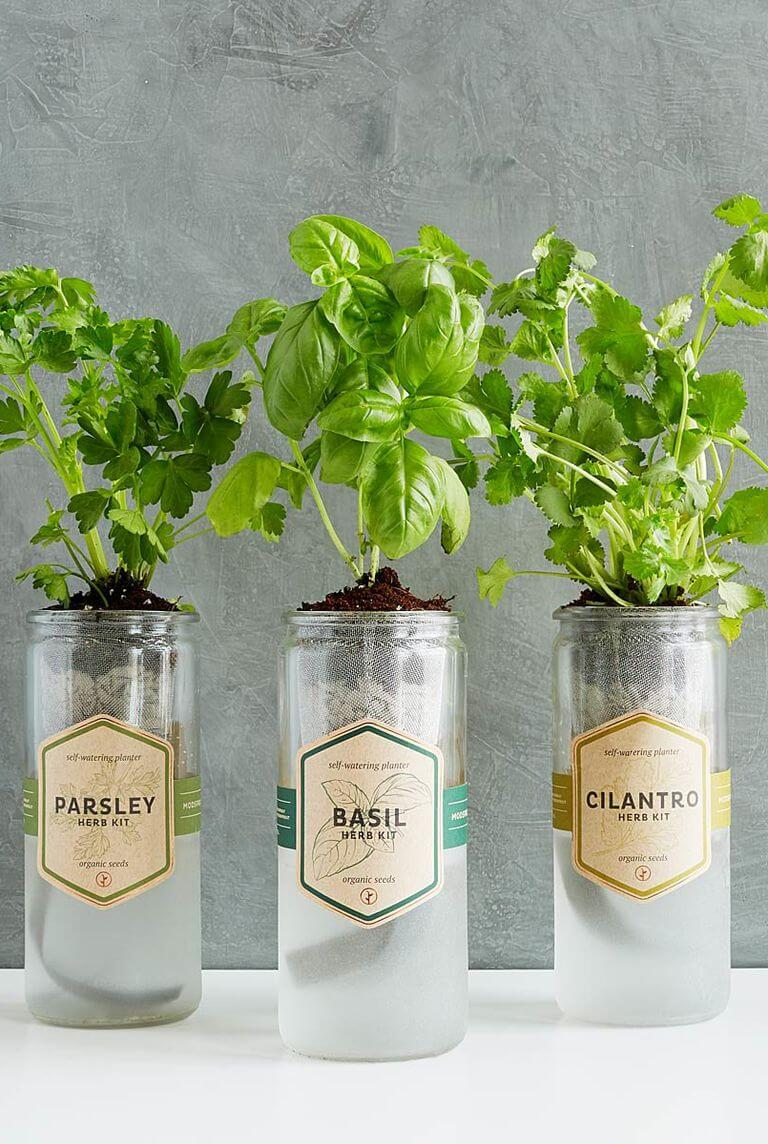 53 Creative Mini Indoor Garden Ideas Farmfoodfamily