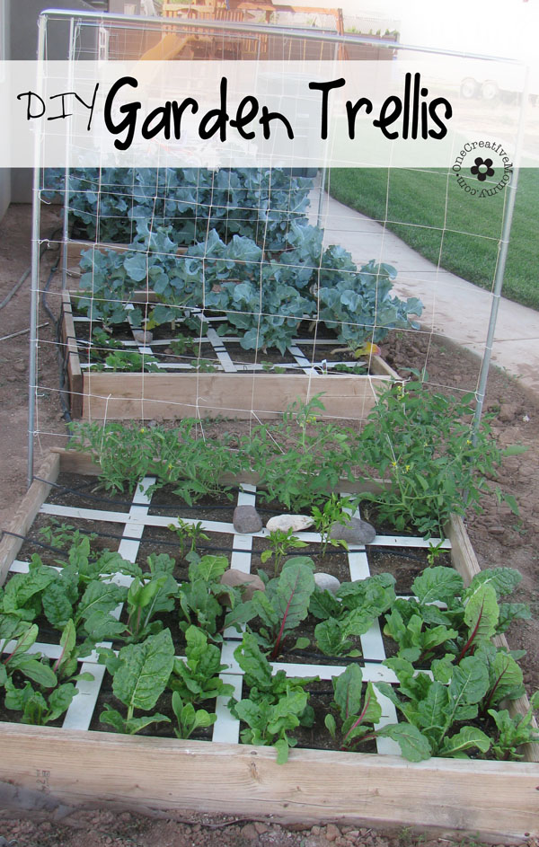 Squash And Melon Trellis | Up-cycled Trellis Ideas For Garden