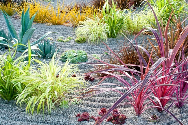 A Beautiful Zen Garden | Zen Garden Designs & Ideas