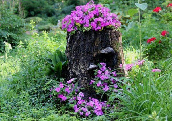 Tree Stump Planter | Tree Stump Decorating Ideas | How To Decorate a Tree Stump In Landscape