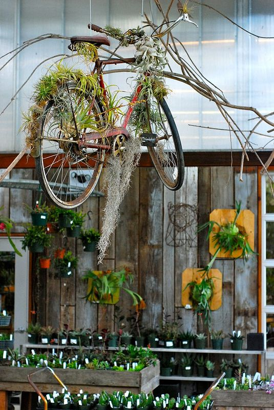 Flying Bicycle | Bicycle Garden Planter Ideas For Backyards | FarmFoodFamily