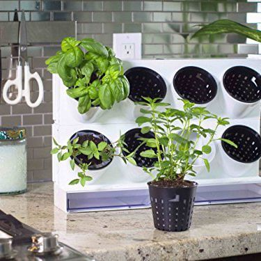 Watex Pixel Garden Desktop, Kitchen Farm | Smart Mini Indoor Garden Ideas DIY - FarmFoodFamily.com