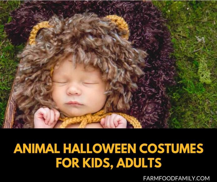 Best Animal Halloween Costumes for kids and adults