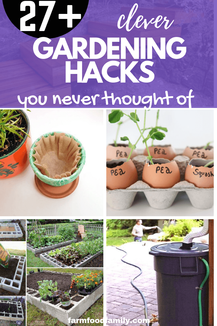 27+ gardening hacks that you never thought of