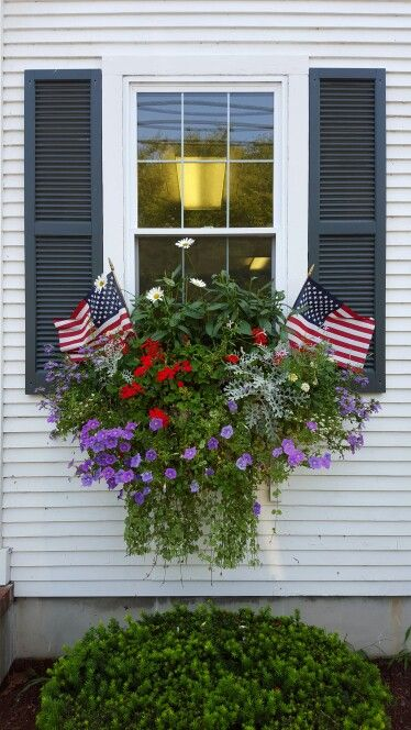 Patriotic Window Box at the Cape, Chatham | Flower Garden Ideas for Containers and Windowboxes