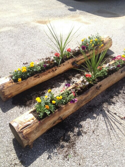 DIY Log planters | DIY Wood Tree Log Decor Ideas - FarmFoodFamily.com