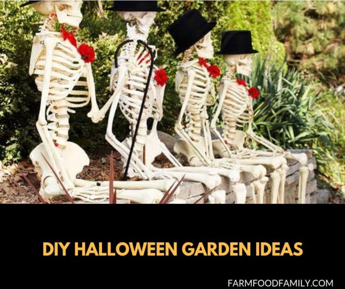 Fall Garden Ideas For Halloween