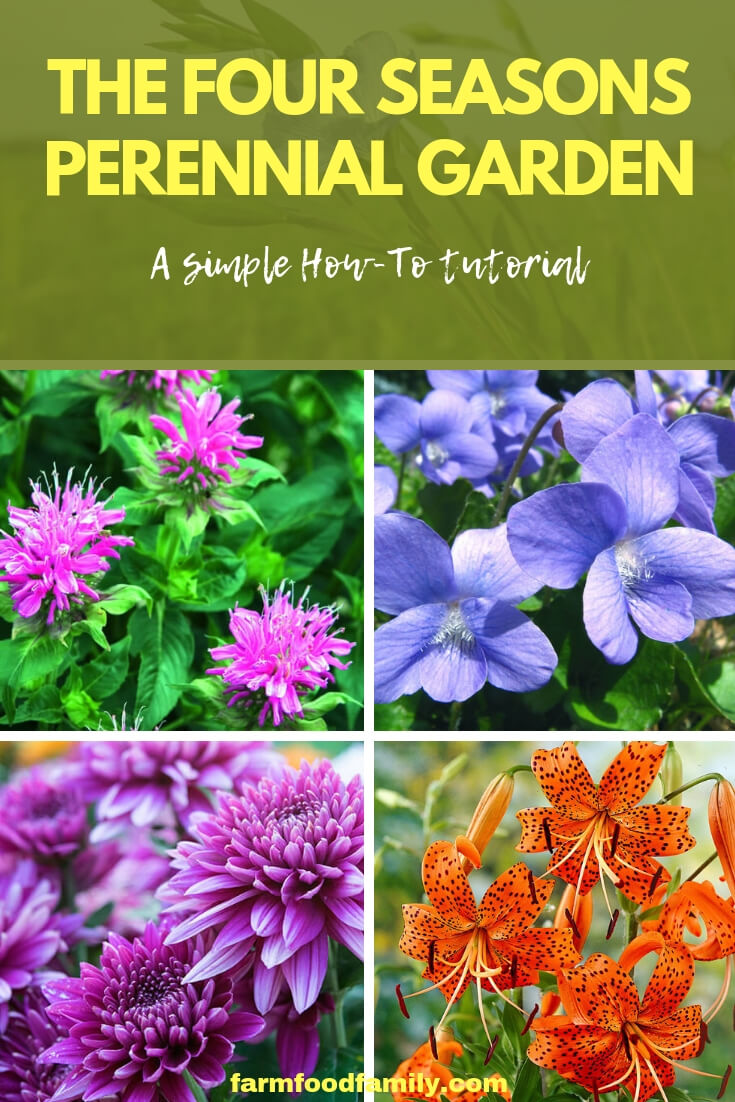 Four seasons perennial garden