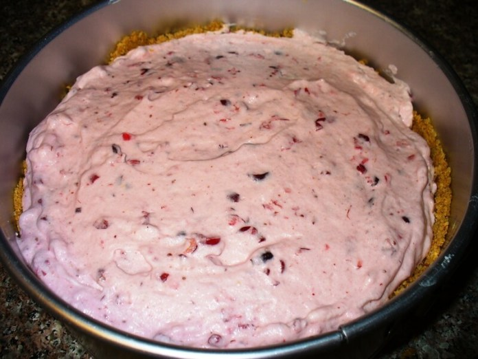 Cranberry Freeze | Ideas For Thanksgiving Leftovers | FarmFoodFamily.com