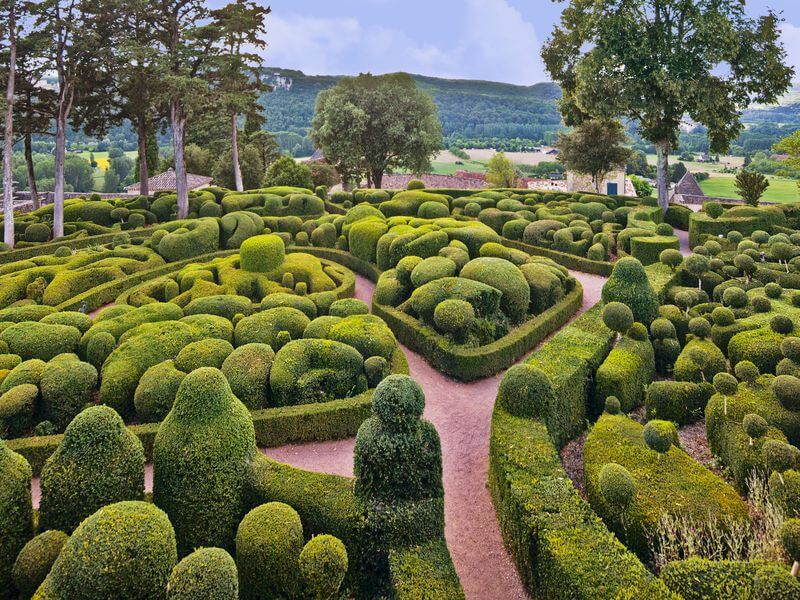 A Topiary