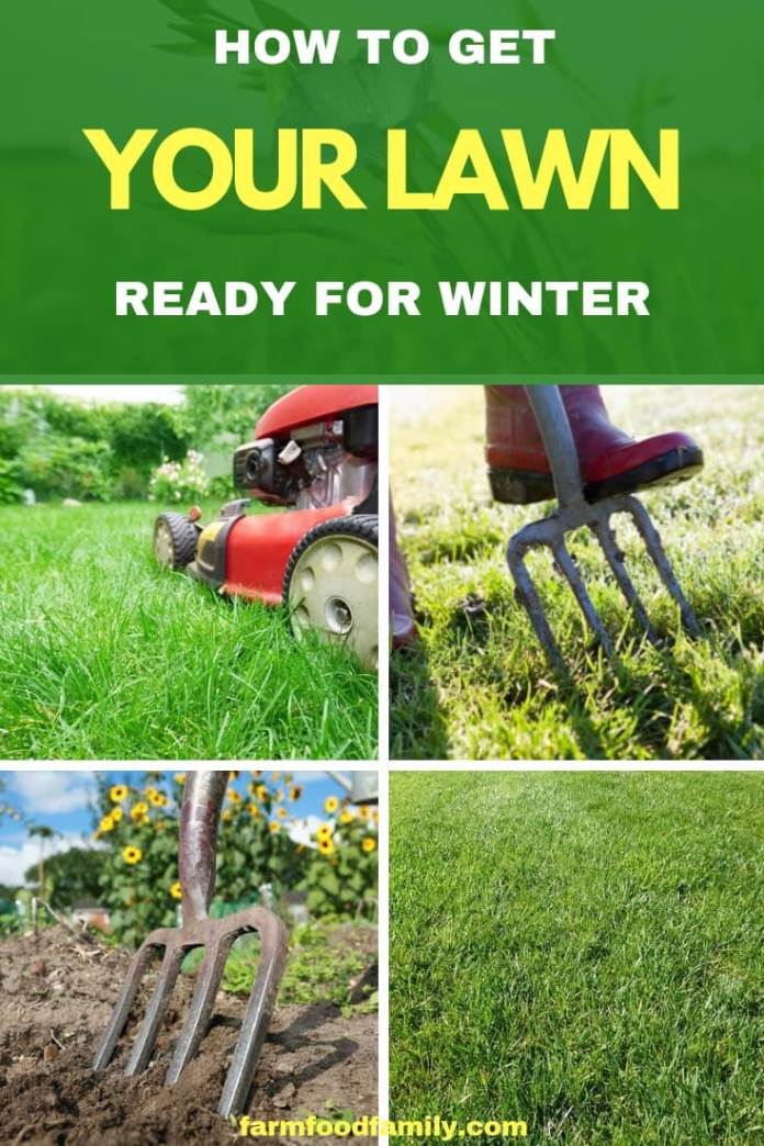 How to get your lawn ready for winter