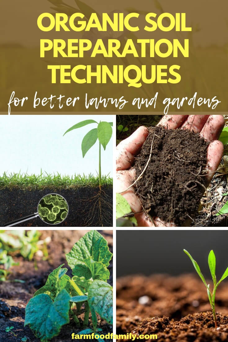 Organic Soil Preparation Techniques for Better Lawns and Gardens