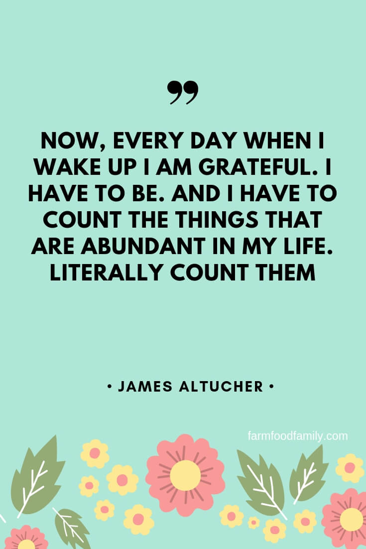 inspirational quotes being grateful