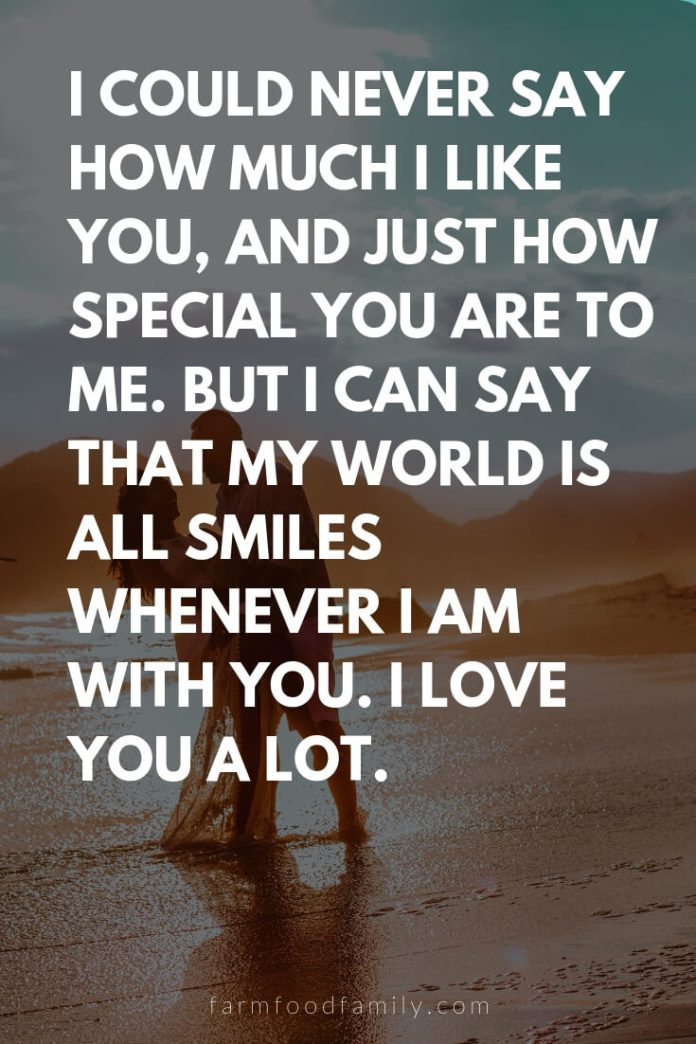 Cute, Funny, and Sweet Love Quotes For Him   I could never say how much I like you, and just how special you are to me. But I can say that my world is all smiles whenever I am with you. I love you a lot.