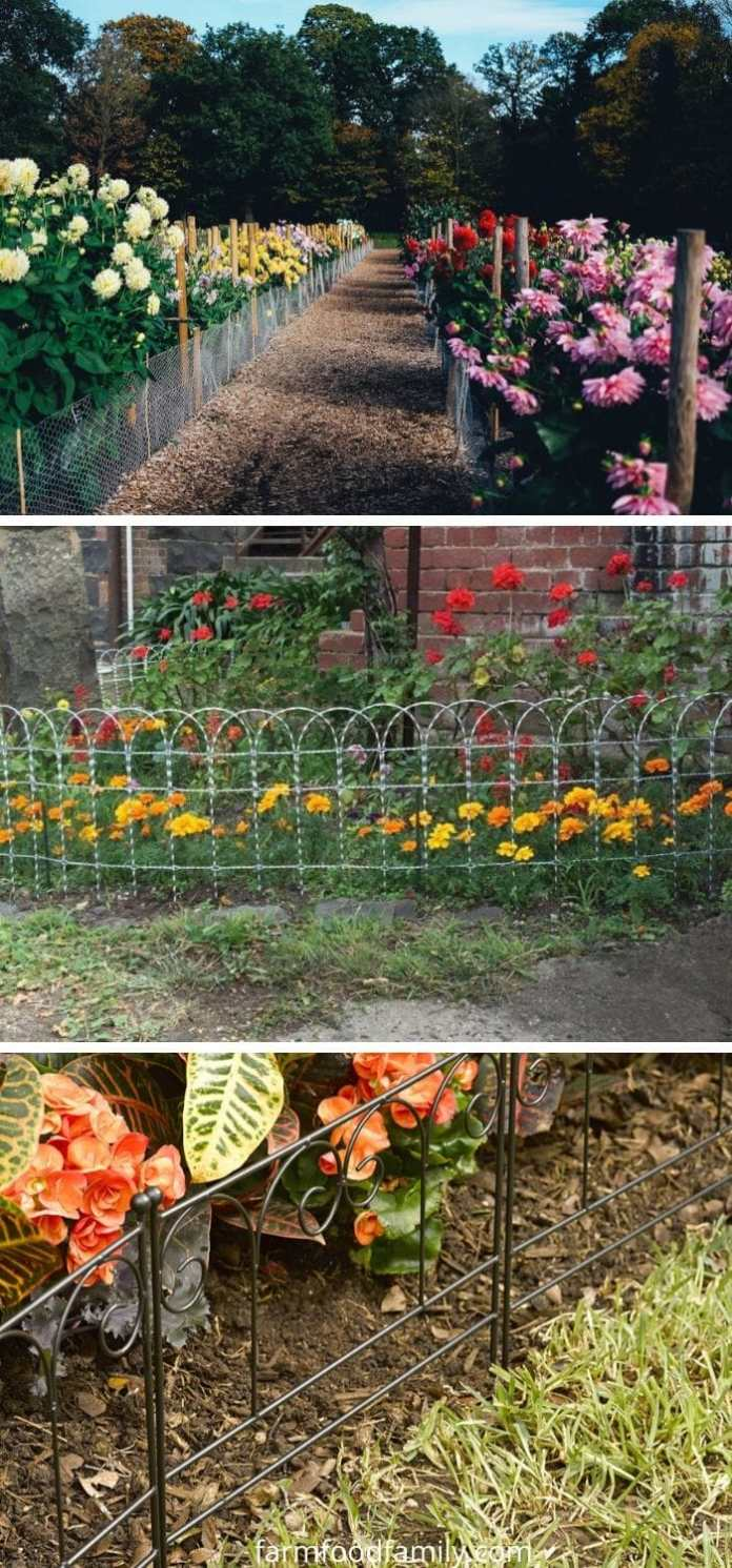 Wire garden edging ideas