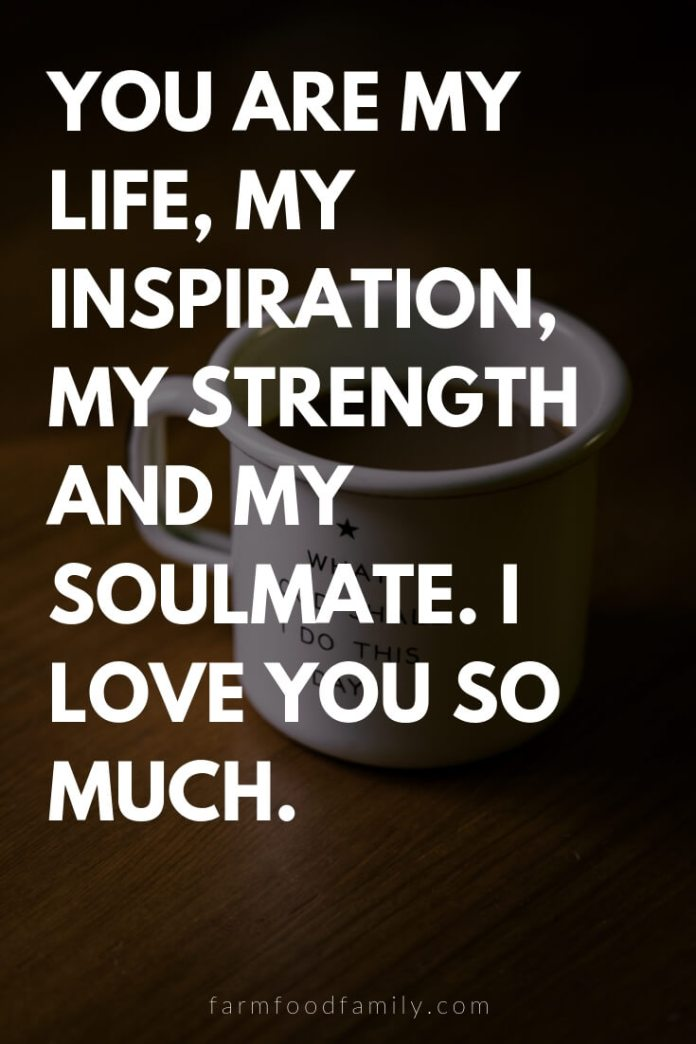 Cute, Funny, and Sweet Love Quotes For Him   You are my life, my inspiration, my strength and my soulmate. I love you so much.
