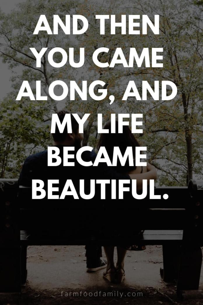 Cute, Funny, and Sweet Love Quotes For Him   And then you came along, and my life became beautiful.