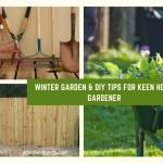 Winter Garden & DIY Tips for Keen Home Gardener
