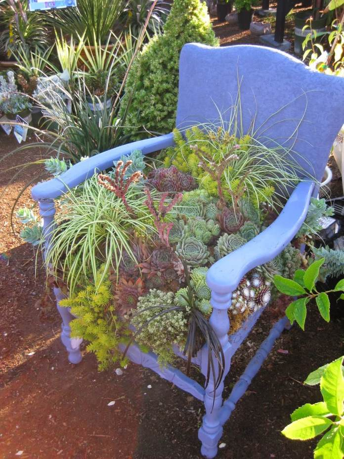 Succulent Chair planter | Creative Upcycled DIY Chair Planter Ideas For Your Garden