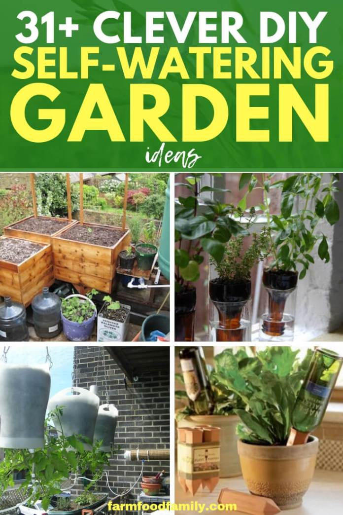 Best DIY Self-Watering Bottle & Container Garden Ideas