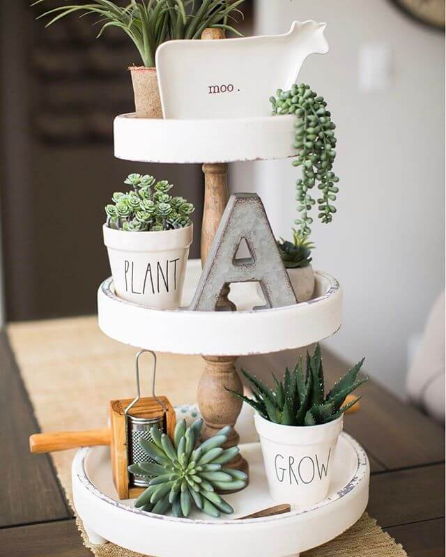 Succulents tray | Best Farmhouse Indoor Plant Decor Ideas & Designs