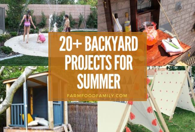 20+ DIY Backyard Projects For...