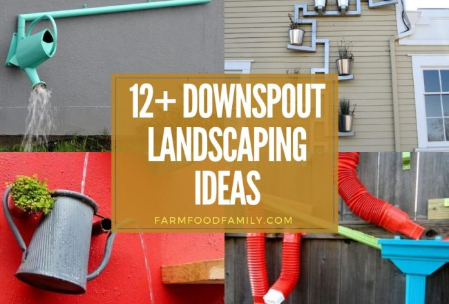 12+ Creative Downspout Landscaping...
