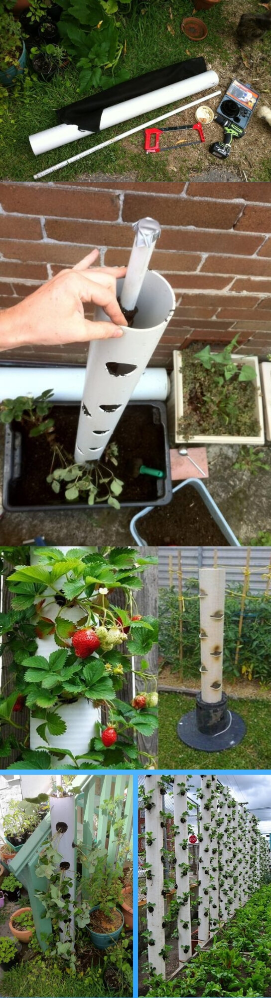 How to make a vertical strawberry tube planter