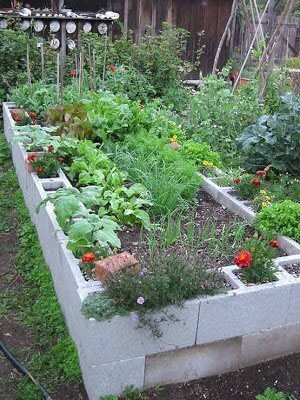 Gopher-proof raised garden bed