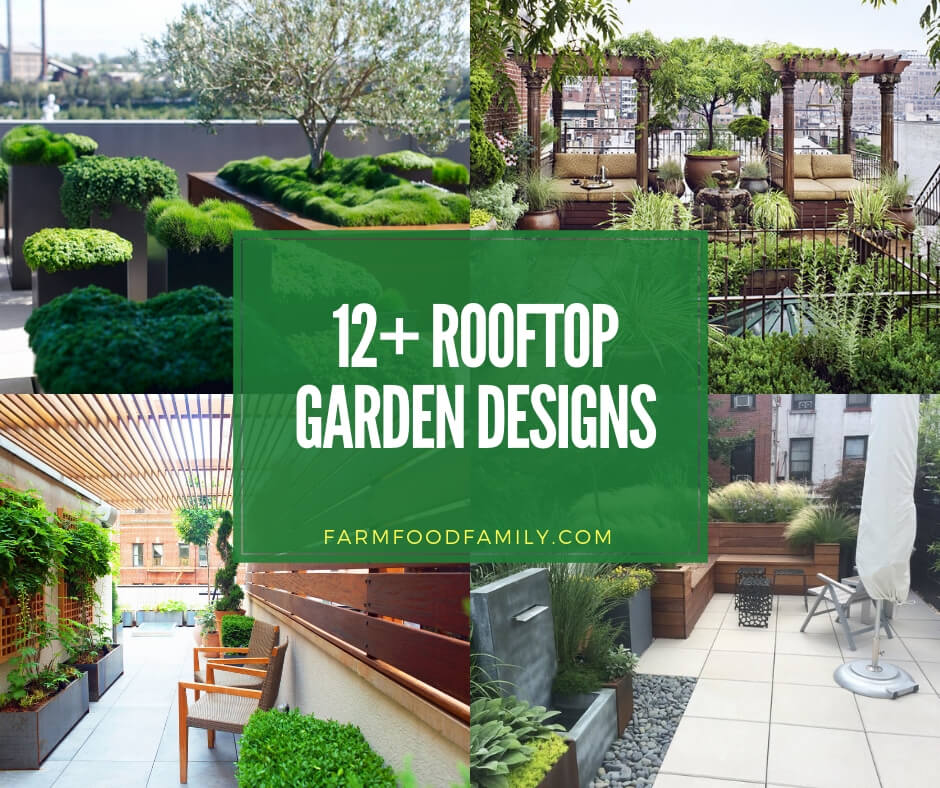 12+ Beautiful Rooftop Garden...