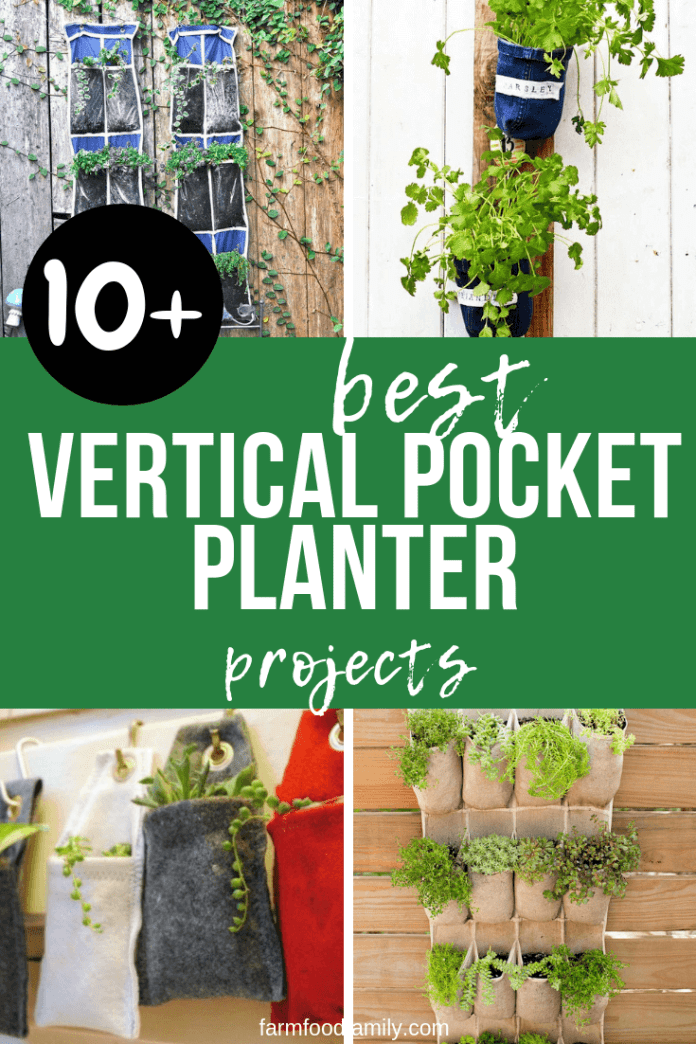 Best DIY Vertical Pocket Planter Ideas For Urban Gardeners