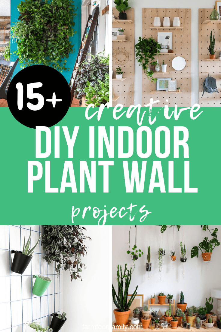 Best DIY Indoor Plant Wall Ideas