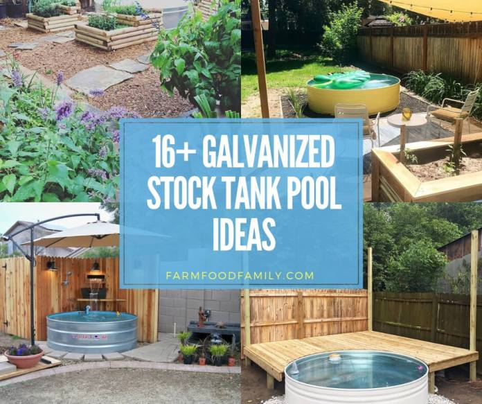 best galvanized stock tank pool ideas