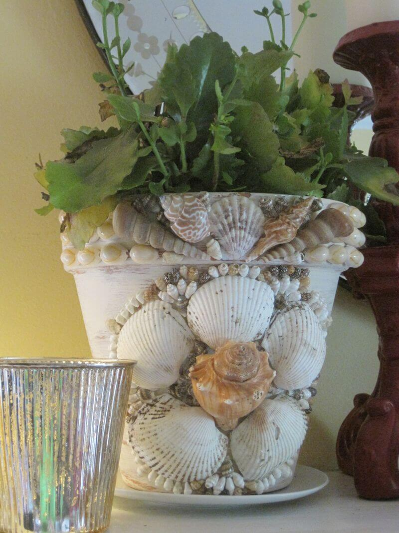 Sea shell planter | Beach-Style Outdoor Ideas For Your Porch and Backyard