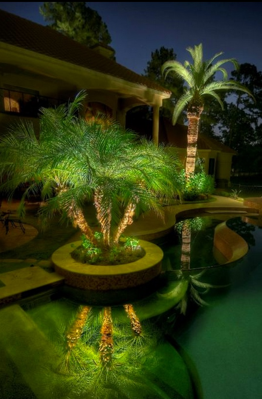 Arizona backyard ideas with lighting