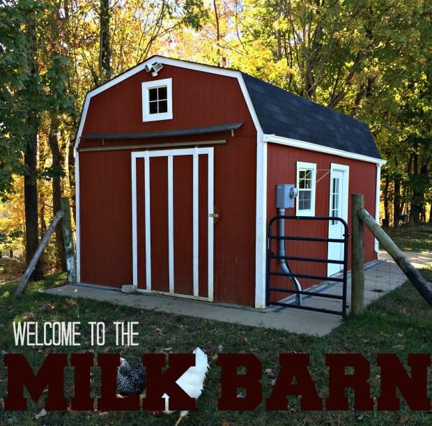 milk barn 1.1