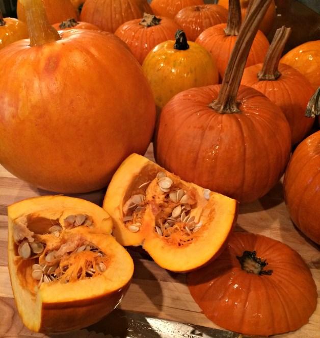 pumpkin puree 1