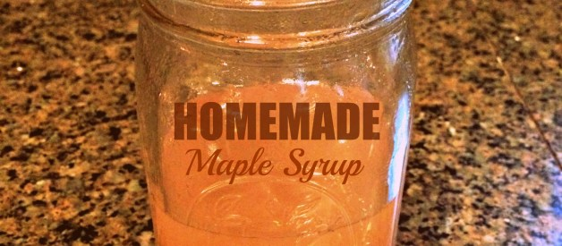 Maple Sugar'in!  Collecting Sap & Making Your Own Syrup