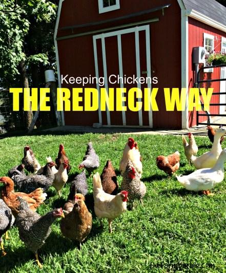 redneck way
