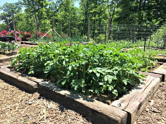may garden 3