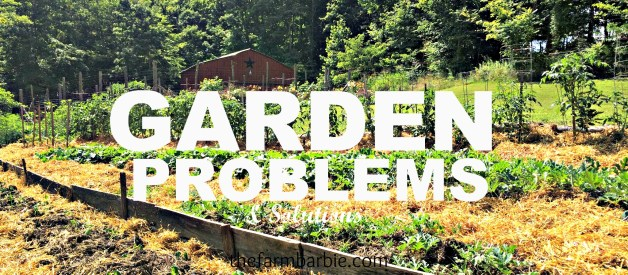 Garden Problems and Solutions