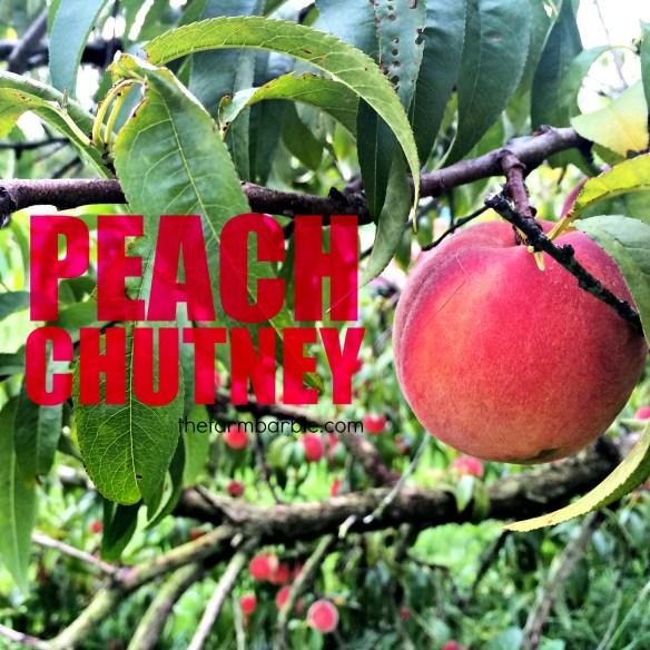 peach chutney