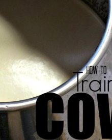 How to Train a Cow