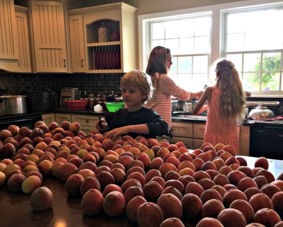peach day 8