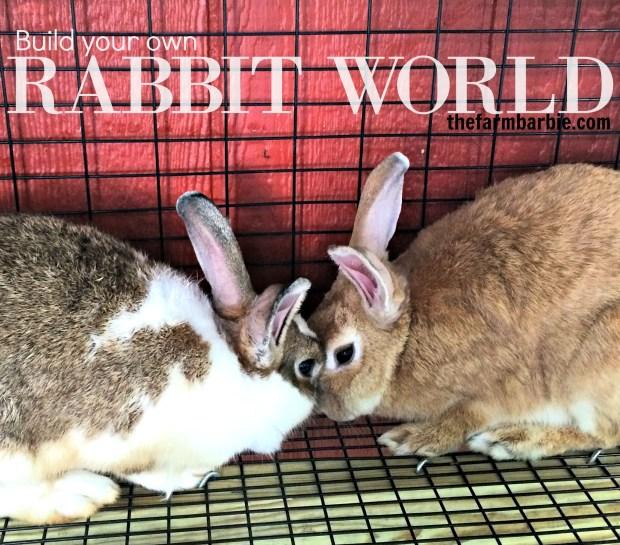 rabbit-world-16