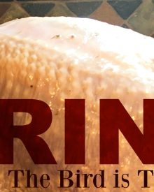 Brine Recipe & Why I Brine My Turkey
