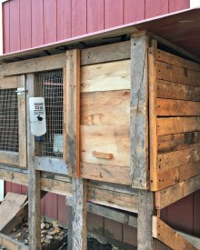 Building the Bunny Hutch (Premium)